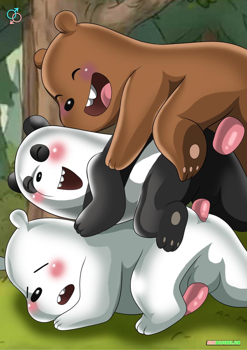 bear bears we Fight night of freddy song